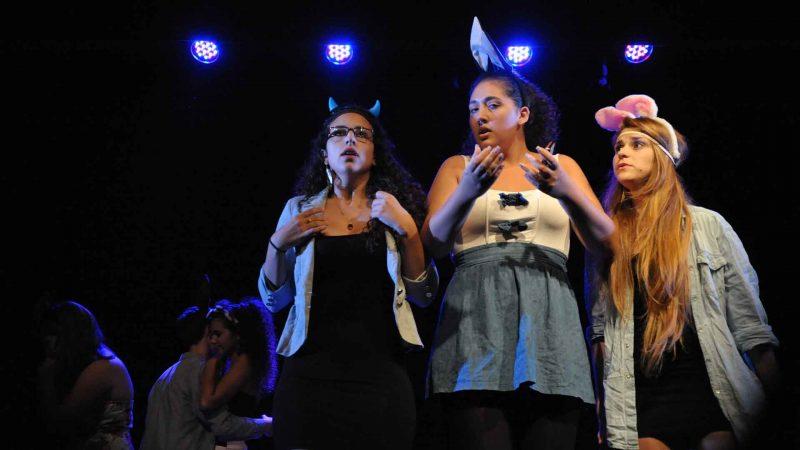 הצגה במסגרת חוג תיאטרון לילדים - לנוער בימת הנוער כפר סבא